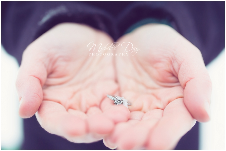 Buffalo NY Engagement Photographer_0006
