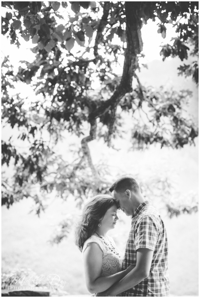 engagement photographers buffalo ny_0014