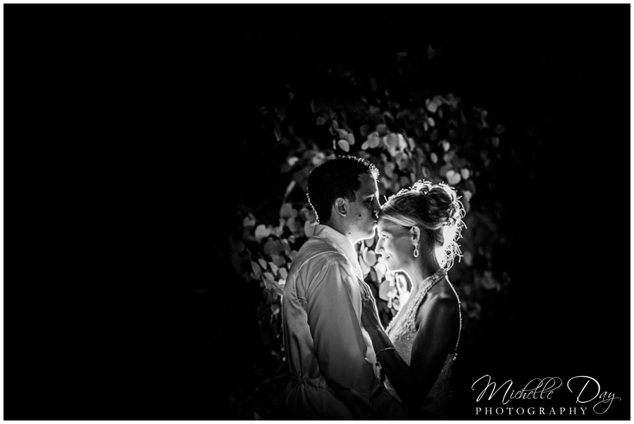Buffalo wedding photographer_0084